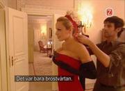 pamela anderson Opera Bal de Vienne