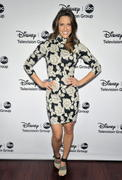 Jill Wagner - 2013 TCA Winter Press Tour Disney ABC Gala in Pasadena 01/10/13