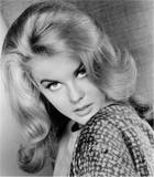 Ann-Margret She was one sexy woman...... Foto 27 (���-������� ��� ���� ����� Sexy Woman ...... ���� 27)